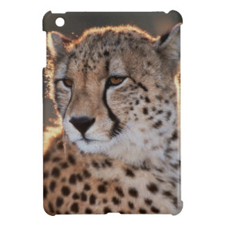 Cheetah looking away case for the iPad mini