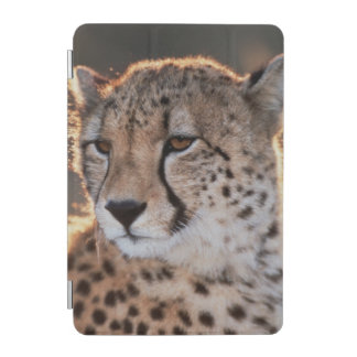 Cheetah looking away iPad mini cover