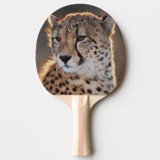 Cheetah looking away Ping-Pong paddle