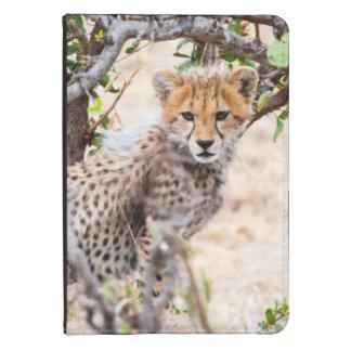 Cheetah, Maasai Mara National Reserve Kindle Touch Cover