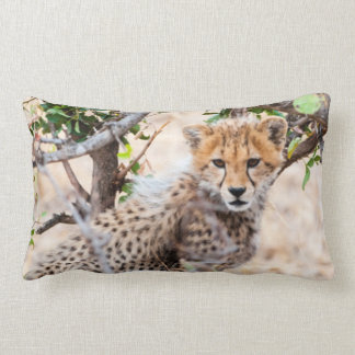 Cheetah, Maasai Mara National Reserve Lumbar Pillow