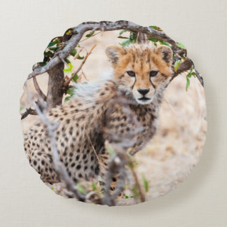 Cheetah, Maasai Mara National Reserve Round Pillow