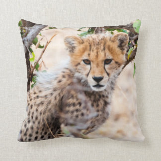 Cheetah, Maasai Mara National Reserve Throw Pillow