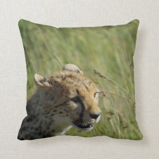Cheetah Maasai Pillow by Jason Hui