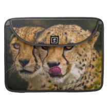 "Cheetah MacBook Pro 15"" Sleeve"