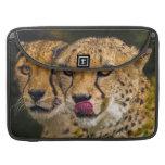 """Cheetah MacBook Pro 15"""" Sleeve Sleeves For MacBook Pro"""