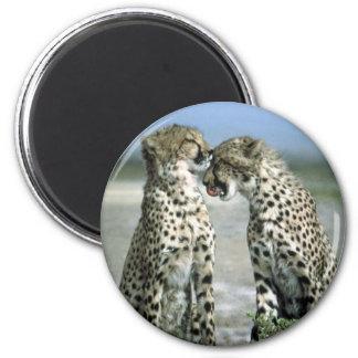 cheetah 2 inch round magnet
