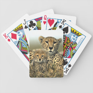 Cheetah Mom and Cub Bicycle Playing Cards