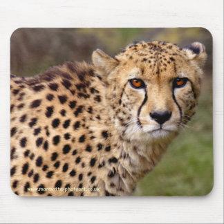 Cheetah Mousemat Mouse Pad