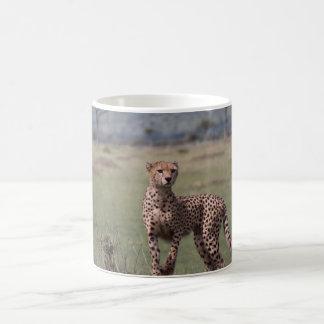 Cheetah Classic White Coffee Mug