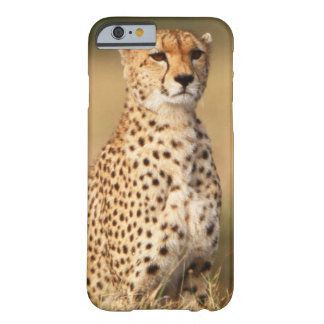 Cheetah on small mound for better visibility barely there iPhone 6 case