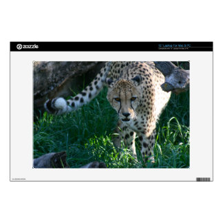 "Cheetah on the hunt 13"" laptop skins"