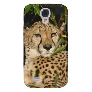 Cheetah photograph galaxy s4 cover