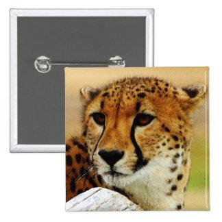 Cheetah Pinback Button