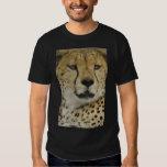 Cheetah Playeras