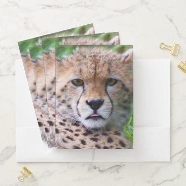 Beach Themed Cheetah Pocket Folder