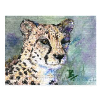 Cheetah Portrait aceo Postcard