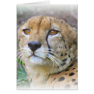 Cheetah portrait card