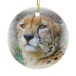 Cheetah portrait christmas tree ornament
