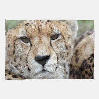 Cheetah portrait hand towel
