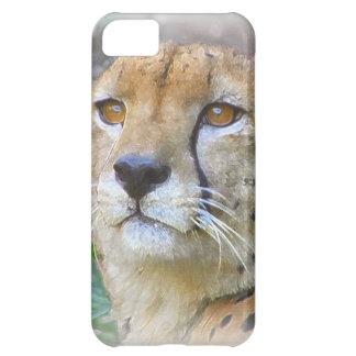 Cheetah portrait iPhone 5C covers