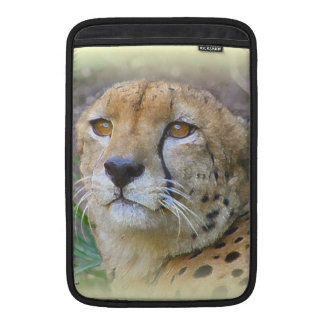cheetah portrait MacBook air sleeve