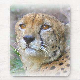 Cheetah portrait mouse pad