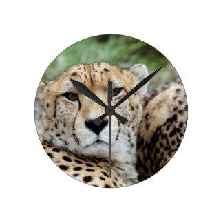 Cheetah portrait round clock