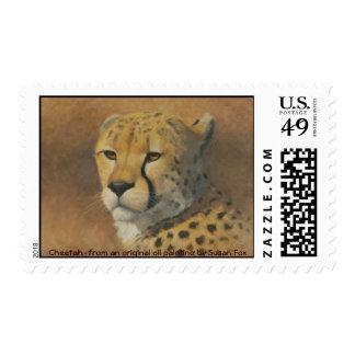 Cheetah Postage