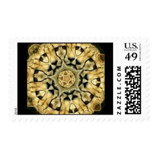 Cheetah Postage Stamp