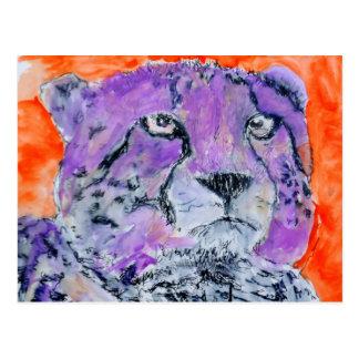 Cheetah Postcard