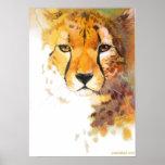 Cheetah! Poster