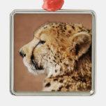 Cheetah Prince Ornament