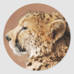 Cheetah Prince Round Sticker