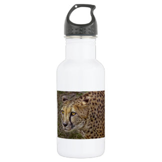 Cheetah Profile Stainless Steel Water Bottle