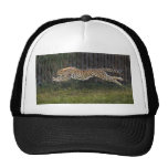 Cheetah Run Ball Cap Mesh Hat