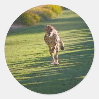 Cheetah Running Round Stickers