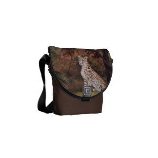 Cheetah Sitting Proud Mini Messenger Bag