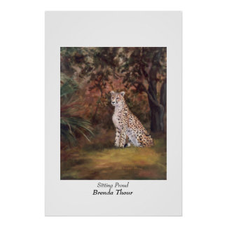 Cheetah Sitting Proud Poster