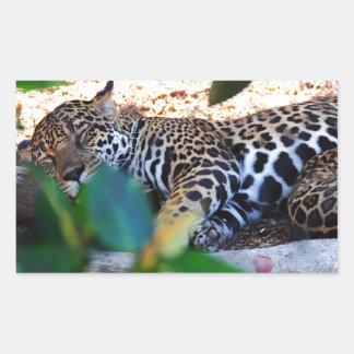 Cheetah Sleep ZzzzZzzzzzZzzz Rectangle Stickers