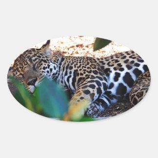 Cheetah Sleep ZzzzZzzzzzZzzz Oval Sticker