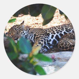 Cheetah Sleep ZzzzZzzzzzZzzz Stickers