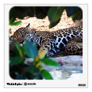 Cheetah Sleep ZzzzZzzzzzZzzz Wall Decal