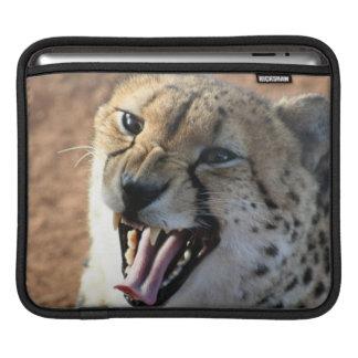 Cheetah Snarl  iPad Sleeve