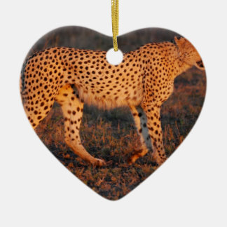 Cheetah South Africa at Sunset Christmas Ornaments