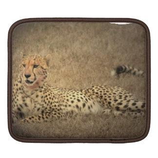 Cheetah Spots  iPad Sleeve