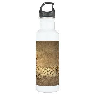 Cheetah Spots  24oz Water Bottle