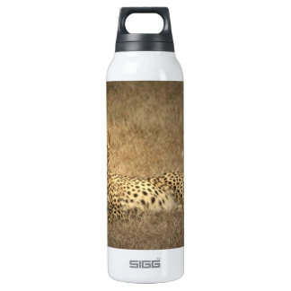 Cheetah Spots  16 Oz Insulated SIGG Thermos Water Bottle