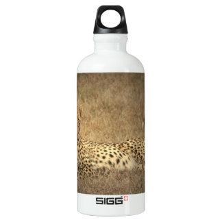 Cheetah Spots  SIGG Traveler 0.6L Water Bottle