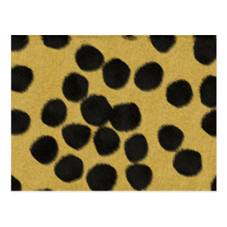 Cheetah Spots Texture Postcard